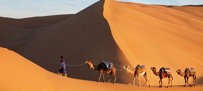 consejos-viajar-al-sahara