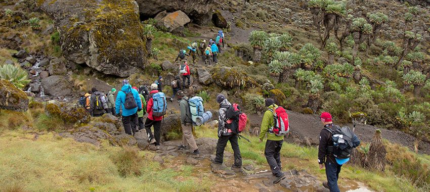 trekking-kilimanjaro-consejos-presupuesto