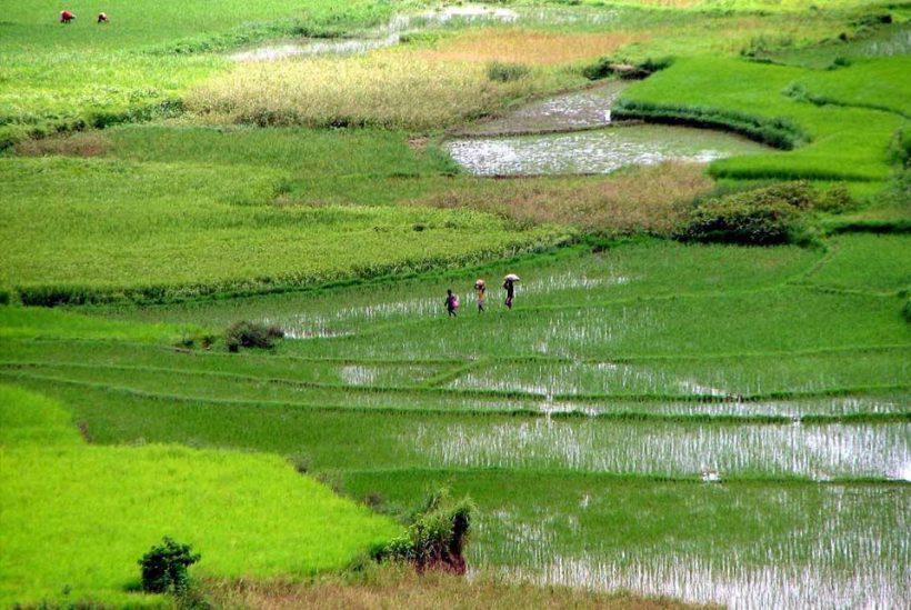 Ruta sur a Ifaty, Madagascar2