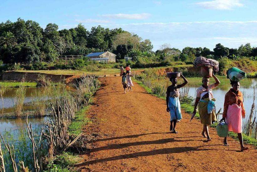 Ruta sur a Ifaty, Madagascar4