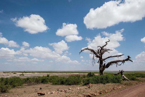 Senderos salvajes, Kenia7