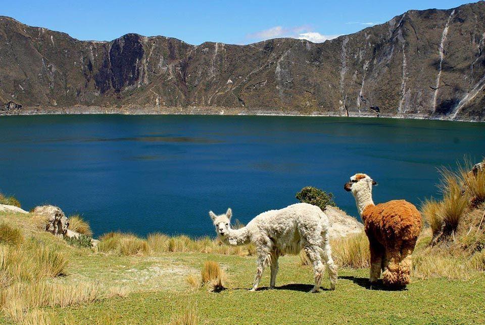 Isla del Sol, Bolivia5
