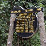 Kilimanjaro – Ruta Lemosho7