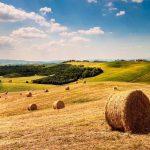La Toscana a tu aire2