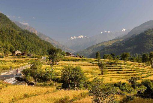 Nepal – Valle y Montaña2