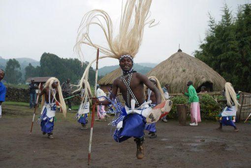Selva Bwindi, Uganda2