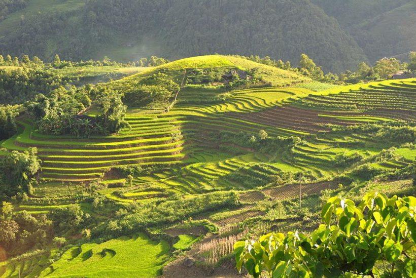 Viaje a Vietnam6