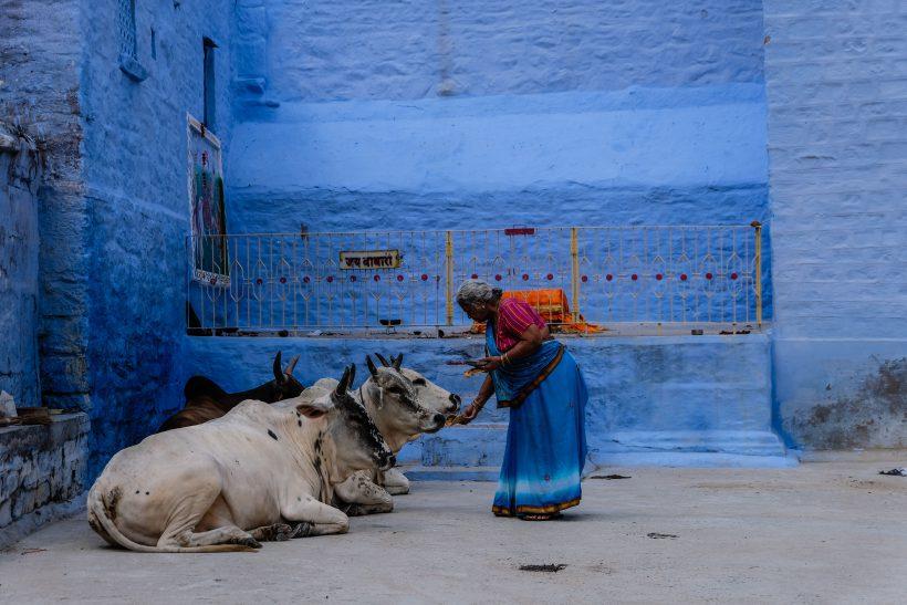 Horizonte Paralelo India 1