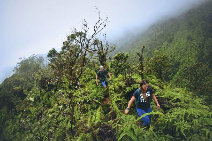 Horizonte Paralelo Costa Rica 11