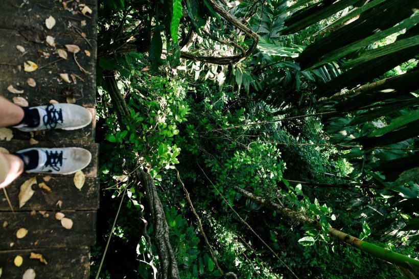 Horizonte Paralelo Costa Rica 24