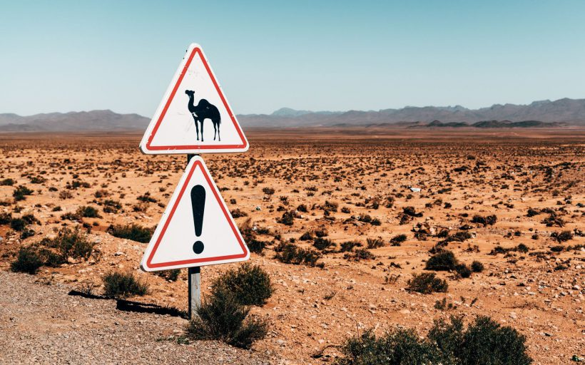 Horizonte Paralelo Marruecos 9