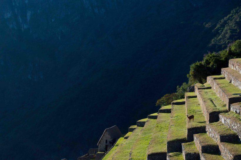 Horizonte Paralelo – Peru 1