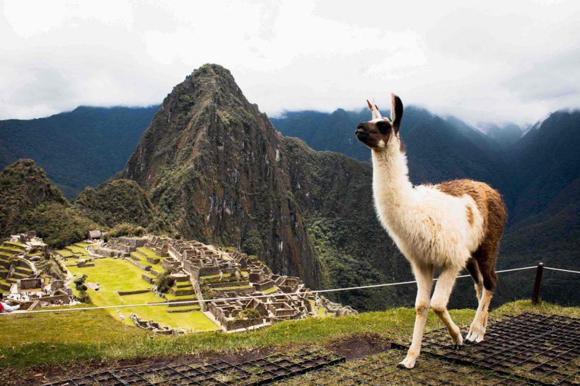 Horizonte Paralelo Peru 3