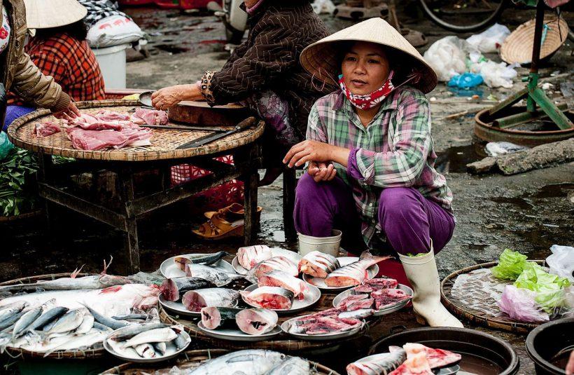 Vietnam Horizonte Paralelo 29