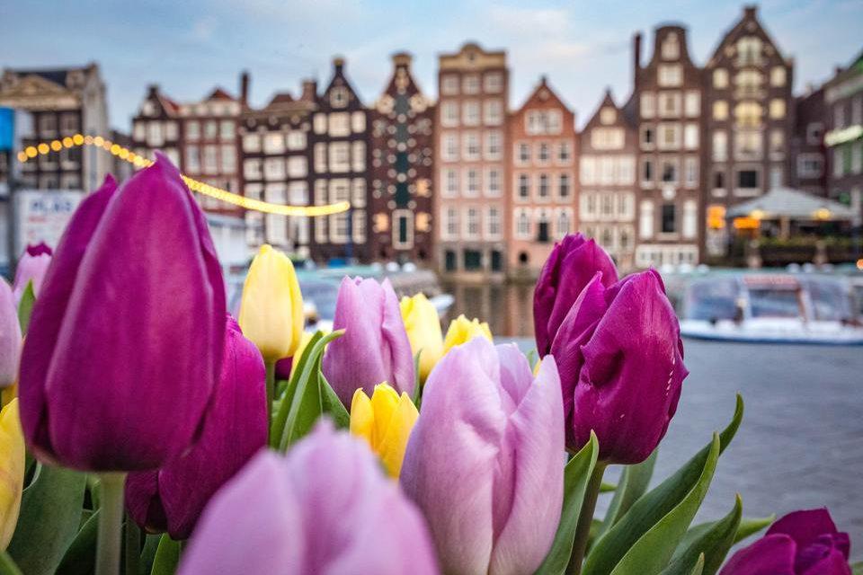 viaje-amsterdam